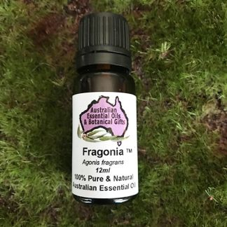 Fragonia Essential Oil 12ml Agonis fragrans