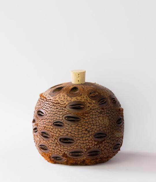 Aromatherapy Natural Diffuser - Banksia Scent Pot Medium Size