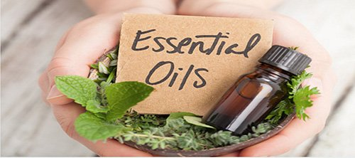 Essential Oils 500x222